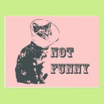 Not Funny Postcard