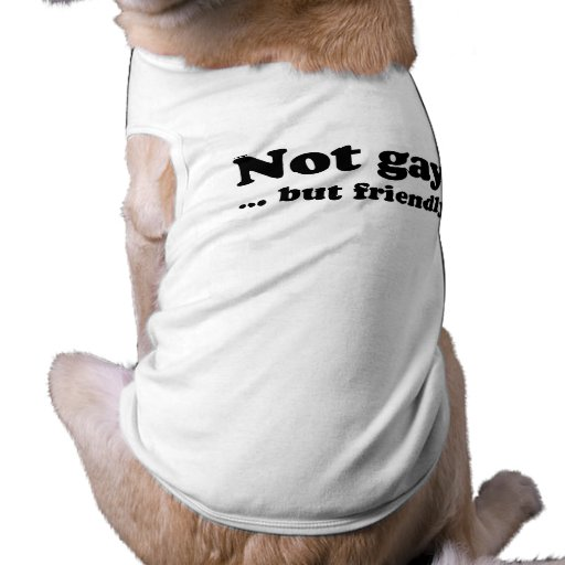 Not gay, but friendly .png pet t shirt