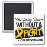 Not Going Down Without a Fight - Appendix Cancer Magnets