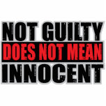 Not Guilty Does Not Mean Innocent Photo Sculpture