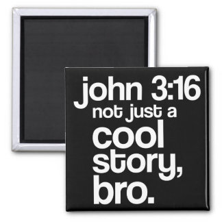 """""""Not Just a Cool Story, Bro"""" Magnet (Light Text)"""