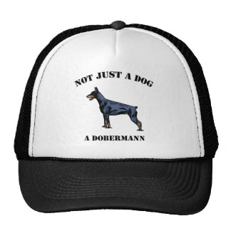 Not Just a Dog Mesh Hat