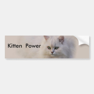 Not Just Any Kitten Bumper Sticker