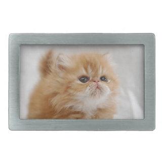 Not Me! Feisty Orange Persian Kitten Belt Buckle
