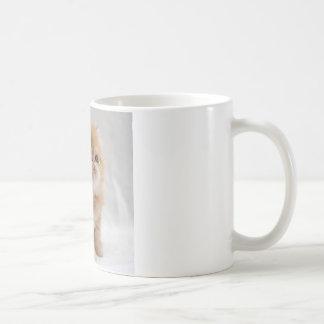 Not Me! Feisty Orange Persian Kitten Coffee Mug