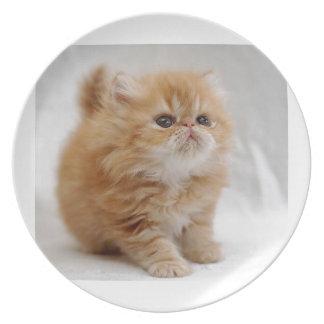 Not Me! Feisty Orange Persian Kitten Melamine Plate