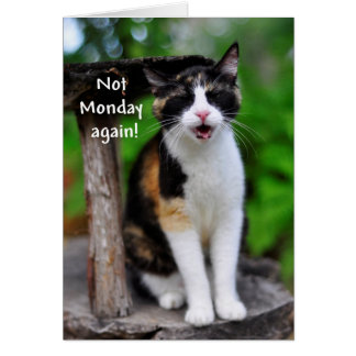 Not Monday Again Humorous Calico Cat Card