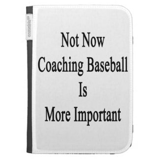 Not Now Coaching Baseball Is More Important Kindle Case