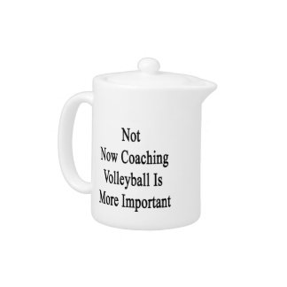 Not Now Coaching Volleyball Is More Important