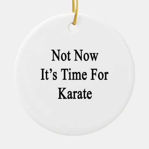Not Now It's Time For Karate Ornaments