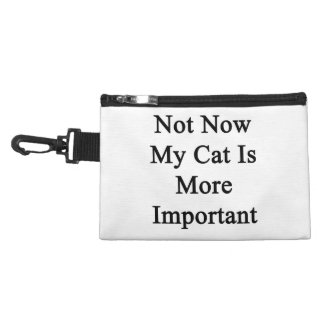 Not Now My Cat Is More Important Accessories Bag