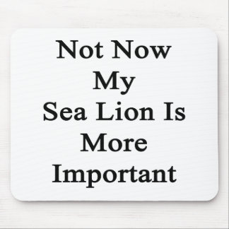 Not Now My Sea Lion Is More Important Mouse Pads