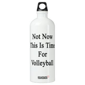 Not Now This Is Time For Volleyball SIGG Traveler 1.0L Water Bottle