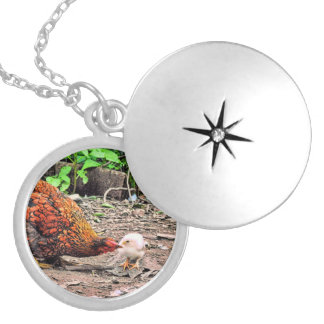 Not One Peep Out Of You! Round Locket Necklace