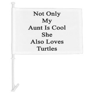 Not Only My Aunt Is Cool She Also Loves Turtles Car Flag