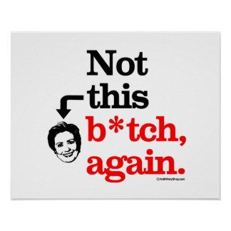 Not this B-tch again -png.png Poster