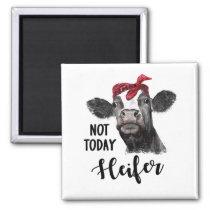 not today heifer magnet