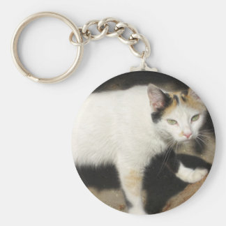 Not Very Friendly Cat Que Me Ves Basic Round Button Keychain
