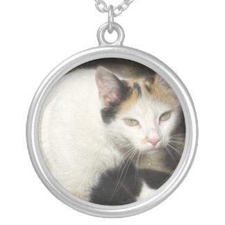 Not Very Friendly Cat Que Me Ves Round Pendant Necklace