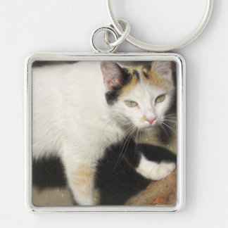 Not Very Friendly Cat Que Me Ves Silver-Colored Square Keychain