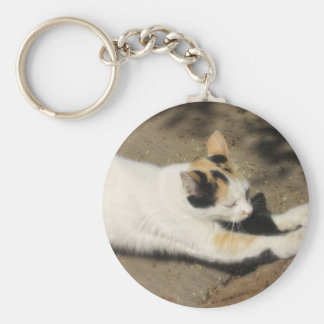 Not Very Friendly Cat Stretch Basic Round Button Keychain