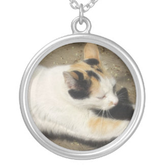 Not Very Friendly Cat Stretch Round Pendant Necklace