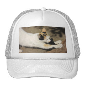 Not Very Friendly Cat Stretch Trucker Hat
