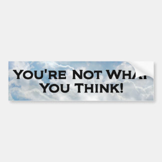 Not What You Think - Bumper Sticker