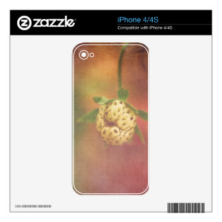 Not yet skins for iPhone 4