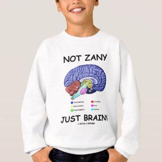 Not Zany Just Brainy (Brain Anatomy Humor) Sweatshirt