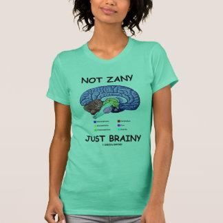 Not Zany Just Brainy (Brain Anatomy Humor) T-Shirt