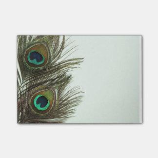 Notas de post-it de la pluma del pavo real