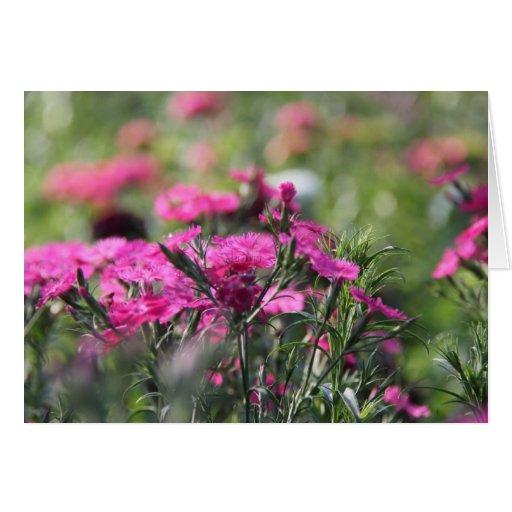 Notas florales, Wildflowers rosados en campo verde Tarjeta De Felicitación