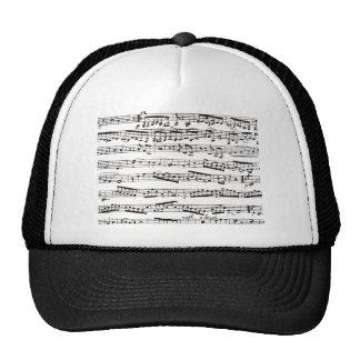 Notas musicales blancos y negros gorro