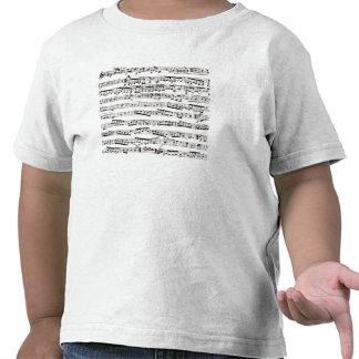 Notas musicales blancos y negros camisetas