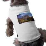 Notch of the White Mountans by Thomas Cole Pet Clothes