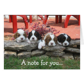 Note card