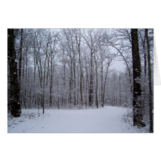 Note Card, Blank - Snowy Woods