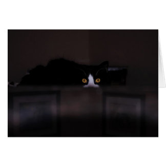 Note Card-invitation- Black Cat with yellow eyes