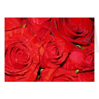 note card - red roses