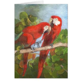 Note Card - Tropical Birds