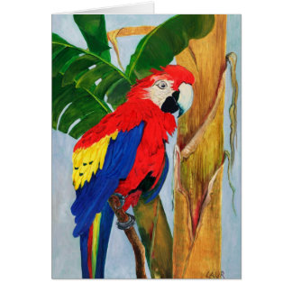 Note Card - Tropical Parrot
