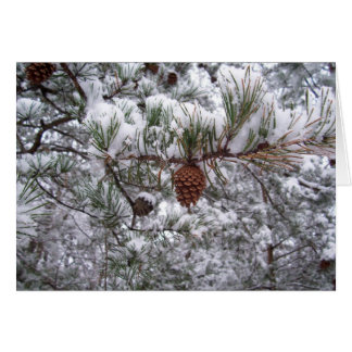 Note Card - Winter Pine