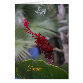 Note from Ginger Card