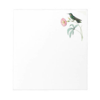 Note Pad with Hummingbirds