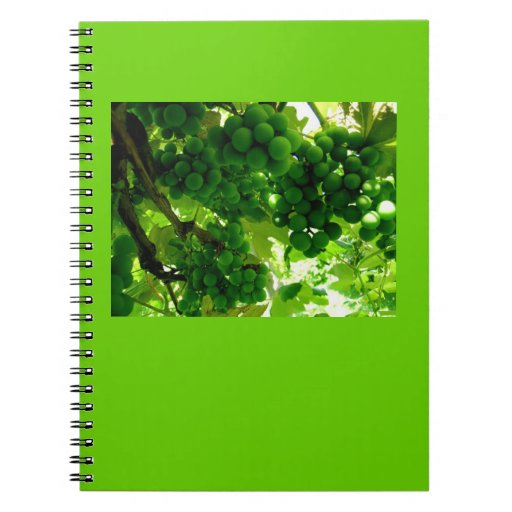 Notebook-Color Therapy-Green 6 Spiral Notebook