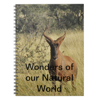 Notebook featuring wonders of the world
