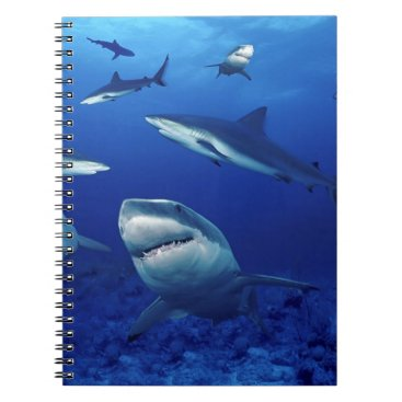 photographybydebbie Notebook-Sharks Notebook