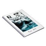Notebook - Trevi Fountain