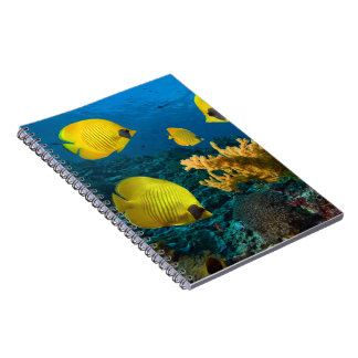 Notebook-Tropical Fish Notebook